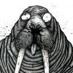 The Saneezing Walrus